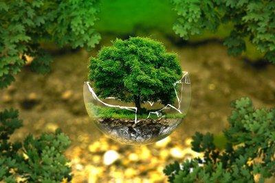 Travailler dans la protection de l'environnement, les énergies renouvelables ou le développement durable en Allemagne